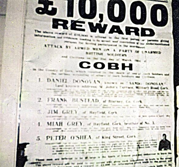 Cobh Reward poster